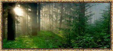 region_elvenlands.png